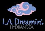 L.A. Dreamin' Hydrangea