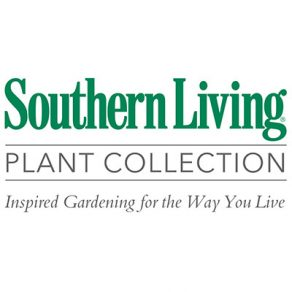 Southern Living®Plant Collection
